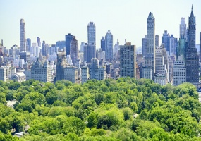 2 Bedrooms, Apartment, Vacation Rental, Central Park S, 2 Bathrooms, Listing ID 1219, New York, New York, United States, 10019,