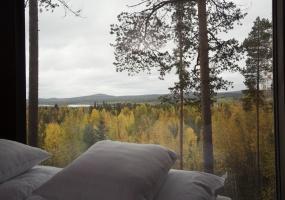 Tree House, Hotel, Edeforsvägen 2A, Listing ID 1740, Harads, Norrbotten County, Sweden, Europe,